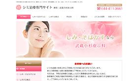 武蔵小杉皮ふ科 シミ治療専門サイト